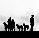 Dog walk. Silhouettes of dogs and people Royalty Free Stock Photo