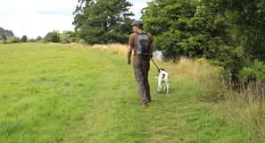 Dog walk in field Stock Photography