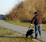 Dog Walk in the Park. A man walking his dog through a local park Royalty Free Stock Image