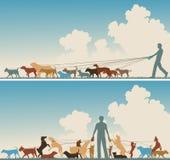 Dog walker royalty free illustration