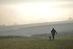 Dog walker Stock Photos