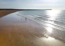 Dog walker shoreline. Dog walker walking on sandy shoreline Stock Photography