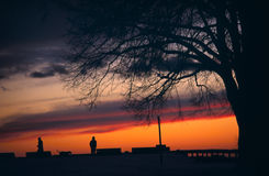 Dog Walker at Sunset Ridge. A dog and its owner are silhouetted against a dramatic, sunset sky, framed by the branches of a leafless tree Royalty Free Stock Image