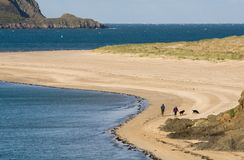 Dog walkers Camel estuary. Two dog walkers on a beach on the River Camel estuary on the north Cornwall coast with Stepper Point to the left of frame Stock Image