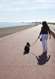 Dog Walking  Royalty Free Stock Photos
