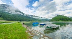 Dog walking alone near a mountain lake with boats in Swiss Stock Photo