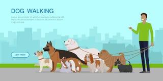 Dog Walking Banner. Man Walks with Puppies stock illustration