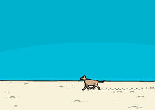 Dog Walking on Beach Royalty Free Stock Images