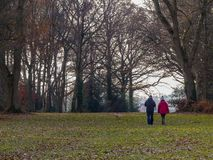 Dog walking couple on Chorleywood Common in winter, Hertfordshire stock photo