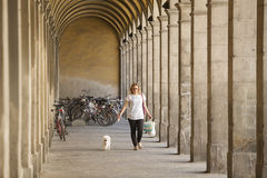 Dog Walking Lucca Royalty Free Stock Images