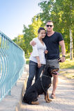 Dog walking in the park with the owners Stock Image