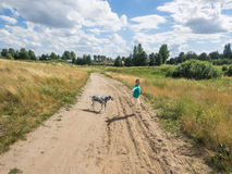 Dog walking Royalty Free Stock Photography