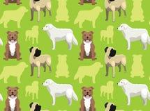 Dog Wallpaper 34 Stock Photo