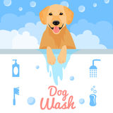Dog wash Royalty Free Stock Photos