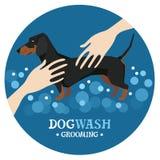 Dog washing Pet Grooming Dachshund Design label. Vector vector illustration