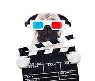 Dog watching the  movies. With 3d glasses and a scene cinema clapper slate board, isolated on white background Stock Images
