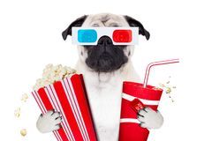 Dog watching the  movies. Pug dog watching a movie in a cinema theater, with soda and popcorn wearing  3d glasses, isolated on white background Stock Image