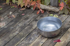 Dog water bowl Stock Images