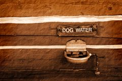 Dog Water Fountain Royalty Free Stock Image