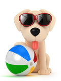 Dog wearing sunglasses Royalty Free Stock Photography