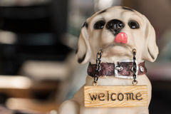 Dog for wellcome. Royalty Free Stock Photos