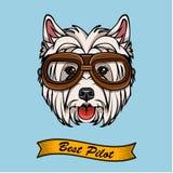 Dog West Highland White Terrier in pilot glasses. Vector. vector illustration