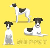 Dog Whippet Cartoon Vector Illustration Royalty Free Stock Images