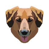 Dog on a white background. Vector. Stock Image