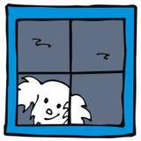 Dog in window Royalty Free Stock Photo