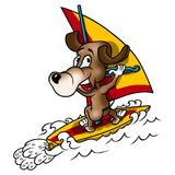 Dog and windsurfing Stock Images