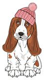 Dog in winter hat Stock Photography