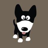 dog wolfen Royaltyfri Fotografi