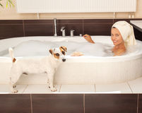 Dog beside the woman in the bathroom Stock Image