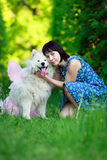 Dog and woman stock photo
