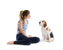 Dog and woman in studio Royalty Free Stock Images