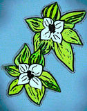 DOG WOOD FLOWERS. White flowers with green leafs on light blue background. Illustration with details of comic books graphic texture in contemporary look Stock Image