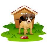 Dog wood house isolated Stock Photography