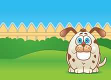 Dog in a Yard. A fat dog in a fenced in backyard Royalty Free Stock Images