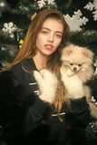 Dog year winter holiday and xmas. Christmas woman with pretty face and pet. santa claus girl with pet at tree. New year of dog, girl hold puppy. Party royalty free stock images