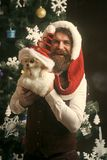 Dog year winter holiday and xmas. Party celebration and christmas. santa claus man with pet at tree. Christmas man with beard on happy face and pet. New year stock photos