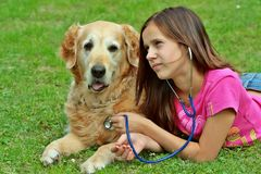 Dog and young girl with stethoscope Royalty Free Stock Photos