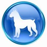 Dog Zodiac icon blue Stock Image