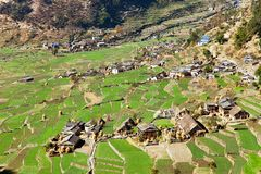 Dogadi village with terraced rice or paddy field Royalty Free Stock Photography