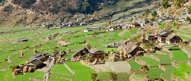 Dogadi village with terraced rice or paddy field Royalty Free Stock Photos