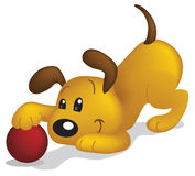 DogBall Royalty Free Stock Image