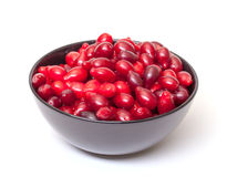 Dogberry in Bowl Stock Photo