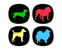 Dogbuttons Stock Image