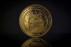 Free DOGE Crypto Coin Placed On Reflective Surface In The Dark Background Royalty Free Stock Photo - 221029575