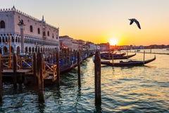 Doges slott och gondoler som är närliggande på solnedgången, Venedig, Italien arkivfoton
