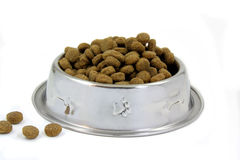Dogfood Stock Photography